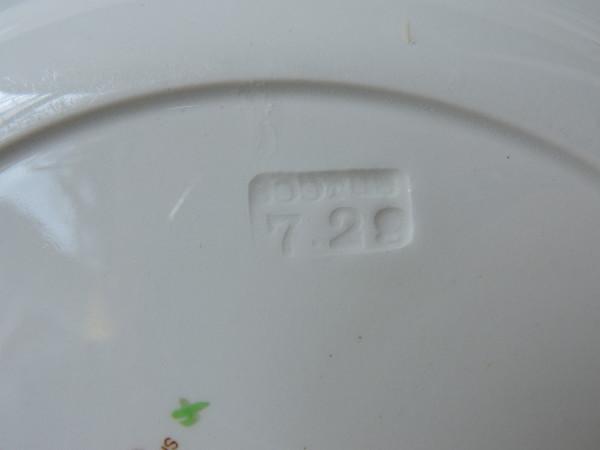 DSCN4064