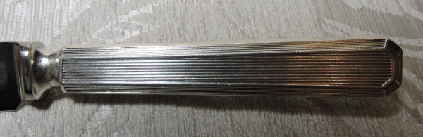 DSCN5334