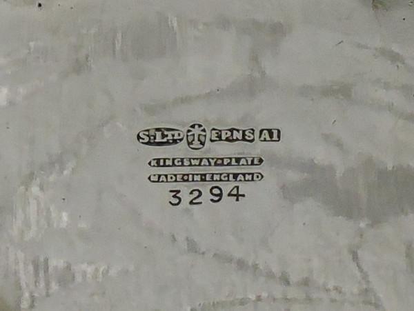 DSCN5613